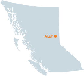 Aley Project Map