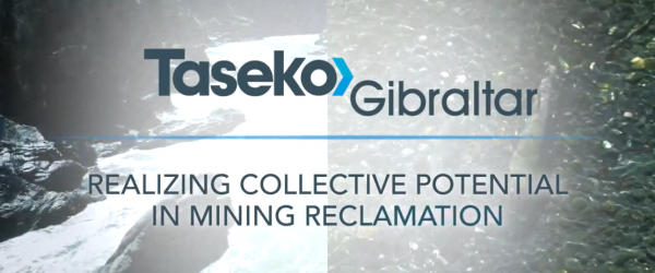 Realizing Collective Potential in Mine Reclamation